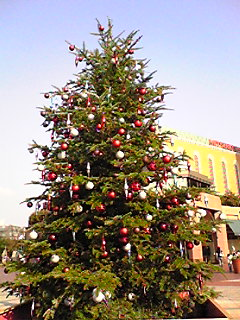 CHRISTMAS TREE @恵比寿